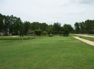 28013 Meadow Forest tee box
